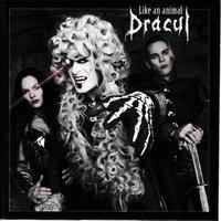 Dracul - Wähle Die Freiheit